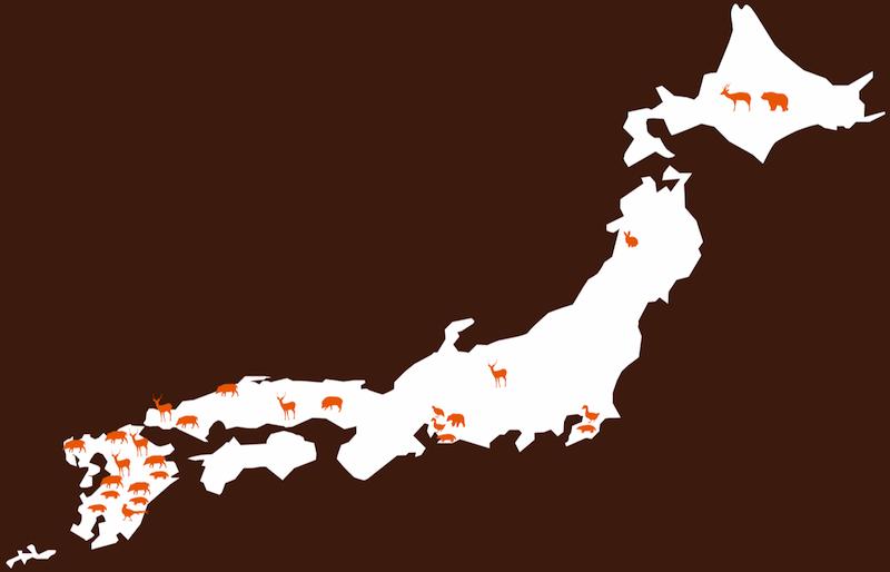 map-l 2