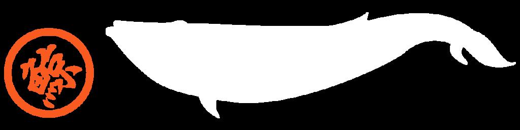 products-mini-09