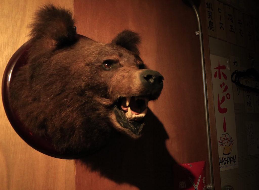 wana-gotanda-bear 2