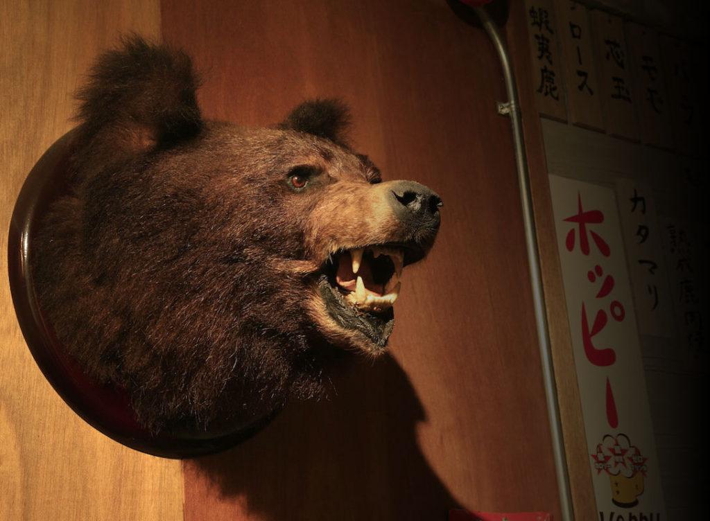 wana_bear