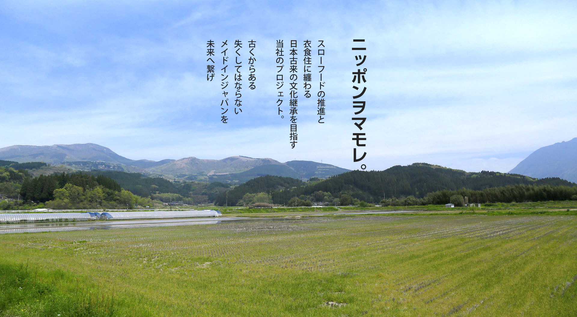 save-japan-header