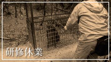3/9(月)10(火)研修休業のお知らせ(3/2更新※変更あり)